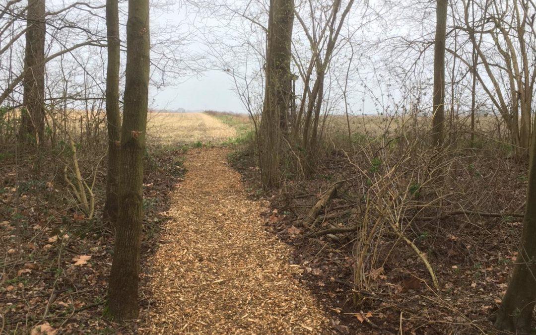 DSM realiseert nieuw bospad Bergerweg richting Graetheide